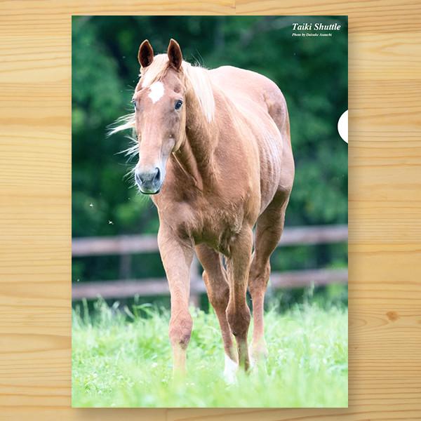 【予約】<引退馬協会>クリアファイル 「タイキシャトル」3