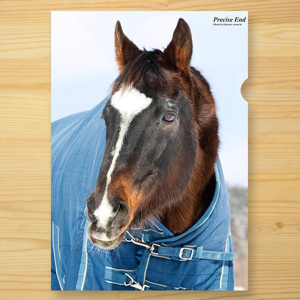 【予約】<引退馬協会>クリアファイル 「プリサイスエンド」