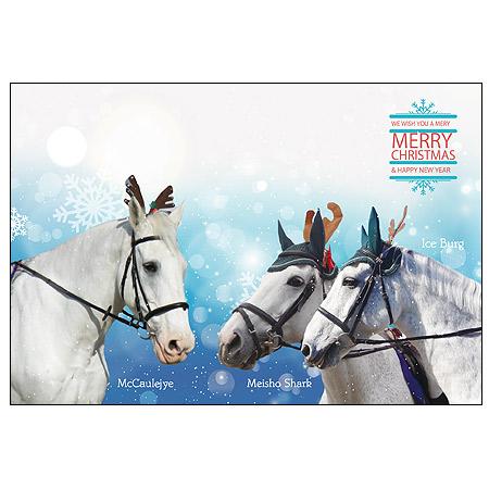 【メール便送料込】園田競馬の誘導馬クリスマスカード「マコーリー、メイショウシャーク、アイスバーグ」