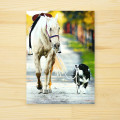 「仲良くお散歩」馬と犬 多機能グリーティングカード