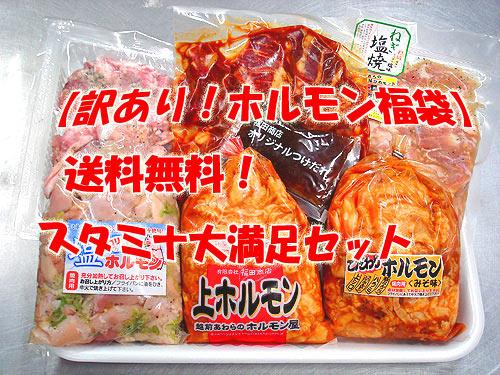 【訳あり!ホルモン福袋】【送料無料】スタミナ大満足セット
