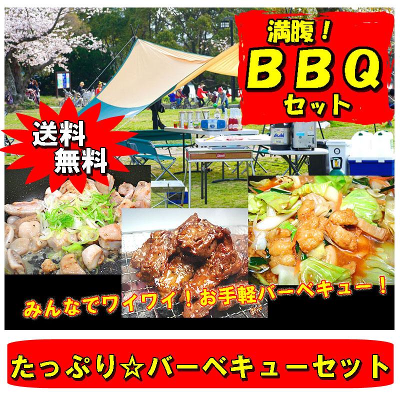 【送料無料】老舗ホルモン屋厳選☆たっぷり大満腹!充実のBBQ用ホルモンセット 焼肉 BBQ バーベキュー