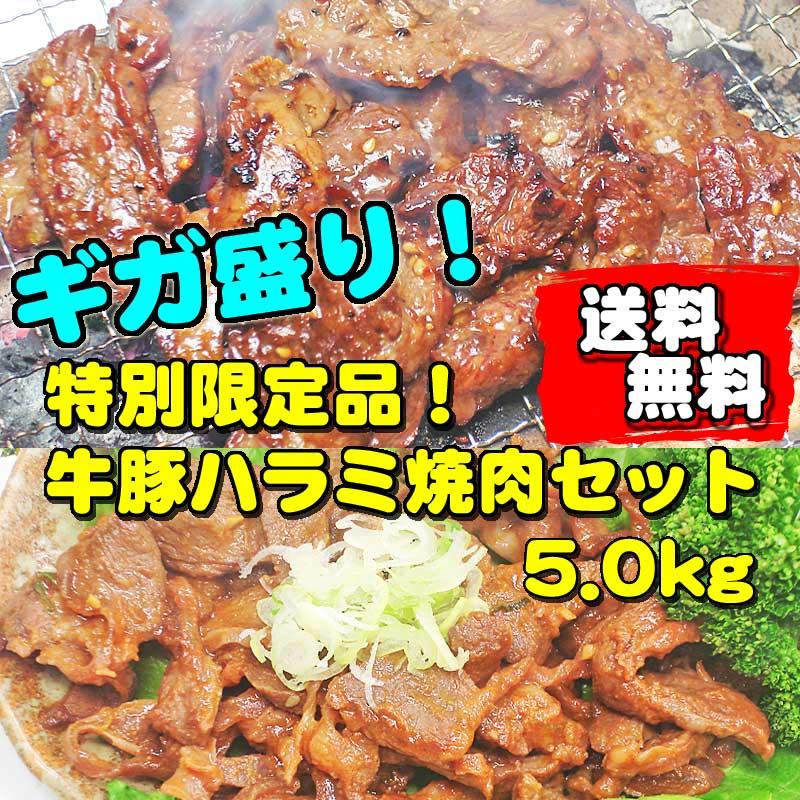 【送料無料】ギガ盛り!ボリュームたっぷり5kg入!スタミナ満点!貴重な牛豚ハラミ焼肉セット!