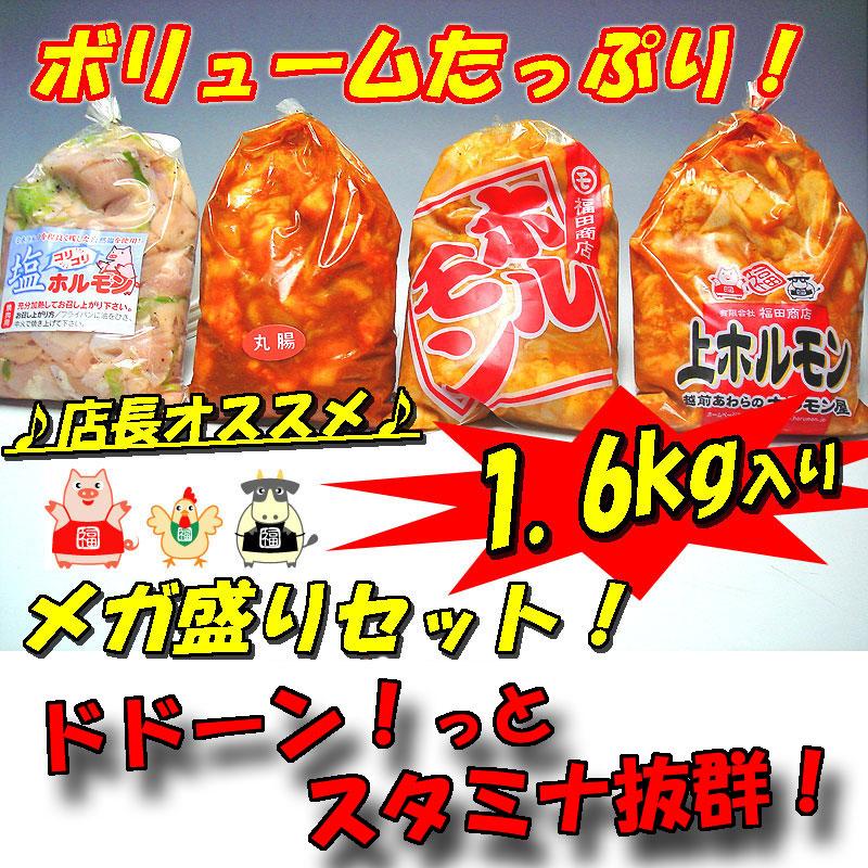 【送料無料】店長オススメ!メガ盛りホルモンセット1.6kg入り