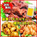 【送料無料】豪華!牛ホルモン焼肉3点セット バーベキュー BBQ