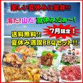 【送料無料】7月限定!夏休み満喫☆ホルモンBBQセット!