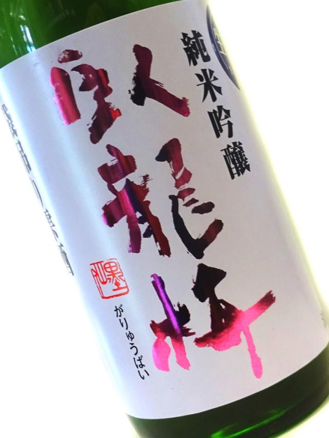 臥龍梅 純米吟醸 袋吊り雫酒 生原酒 山田錦 1800ml