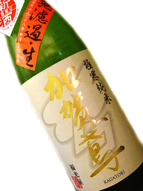 加賀鳶 極寒純米 無濾過・生 720ml【冬季限定】