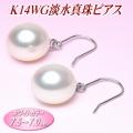 K14WG淡水真珠ピアス(ホワイトカラー/7.5〜7.0mm)