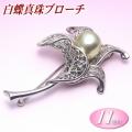 白蝶真珠 ブローチ 11mm ( 真珠 パール 南洋真珠 )