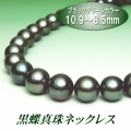 黒蝶真珠ネックレス(10.9~8.5ミリ/ブラックグリーンカラー)