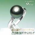 オーロララグーン 黒蝶真珠 リング プラチナ製 ダイヤ入り ピーコックグリーン 9.5mm オーロララグーン鑑別書付き