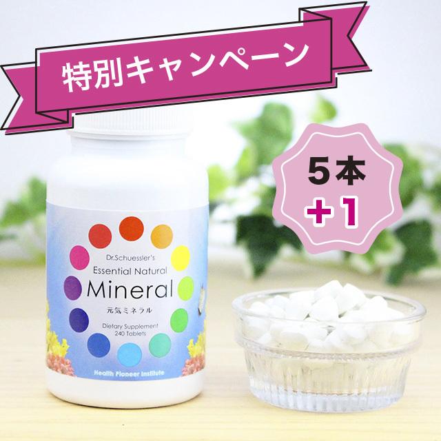 【特別キャンペーン】元気ミネラル 5本+1本セット(海外発送・送料込)
