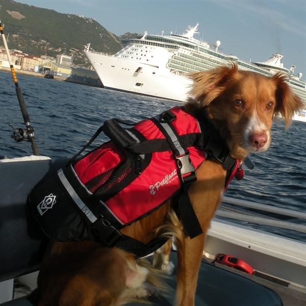 【本気で考えられた犬用】CrewSaverライフジャケット S