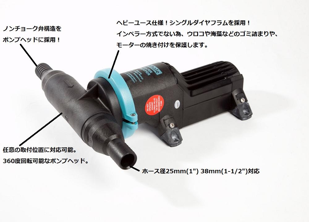 【Whale】イケス専用ポンプ グルーパー24v