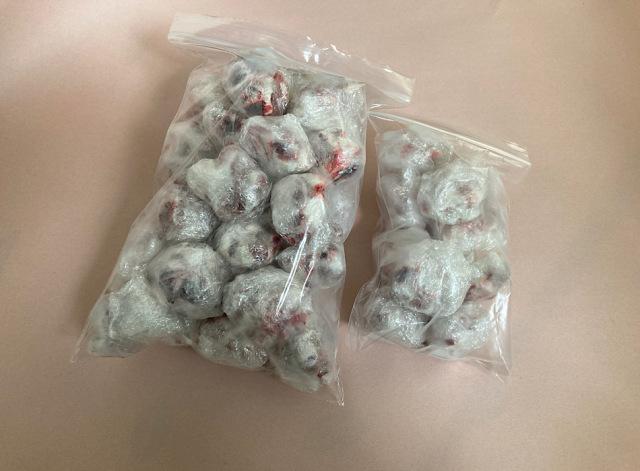 冷凍 国産 刻みアダルトマウスLサイズ 1匹1包み 10匹入り (胃・腸処理済)