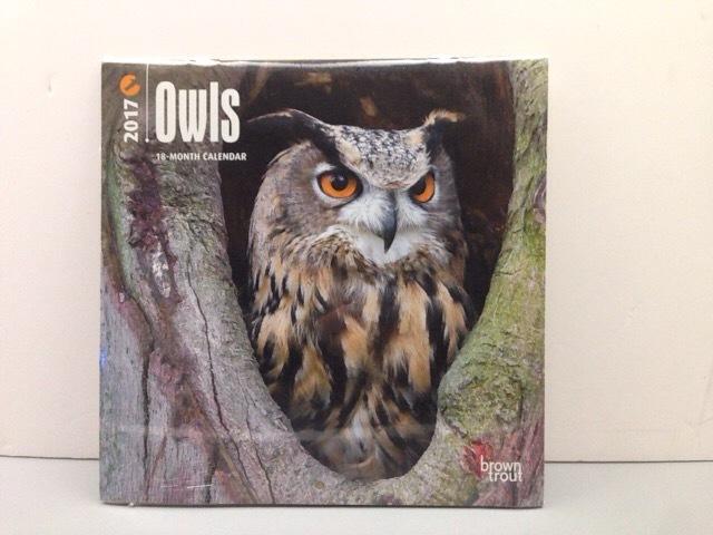 SALE!! 2017年 ミニ フクロウカレンダー  Owles