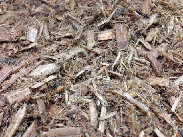 (飼育用品・床材)ZOO MED フォレストフロア FOREST FLOOR 8.8L