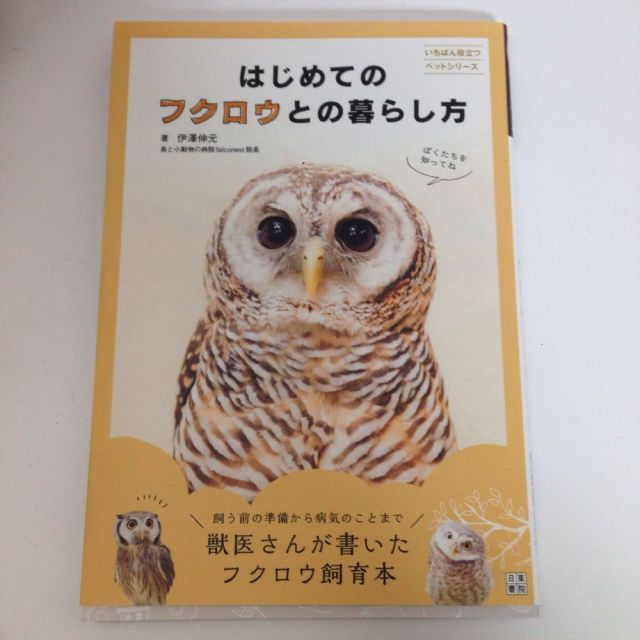 はじめてのフクロウとの暮らし方  伊澤伸元 氏/著