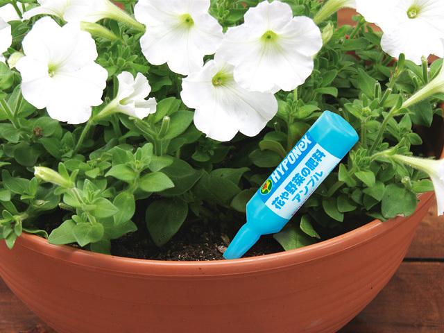 花や野菜の肥料アンプル3