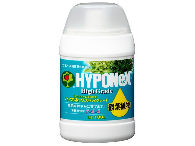 ハイグレード 観葉植物 180ml