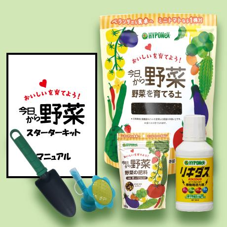 今日から野菜スターターキット(送料無料)