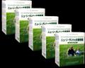 【送料無料】【20%OFF!】ソーキ ニュージーランドの大麦若葉3g×30包 5箱セット