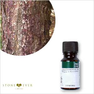 生活の木 アロマオイル(エッセンシャルオイル/精油)