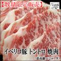 イベリコ豚トントロ焼肉用