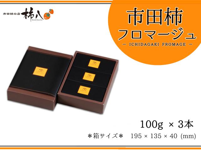 市田柿フロマージュ100g×3 箱