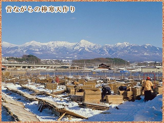 茅野地区の棒寒天製造風景