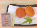 冷凍蔵出し「市田柿あんぽ」5個イメージ