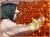干し柿作り700g用