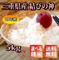 【H29年産】 三重県産 結びの神 玄米5kg【送料無料】【精米無料】【米ぬか無料】【分づき米対応】