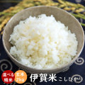 令和元年産 伊賀米コシヒカリ玄米2kg【送料無料】【精米無料】【米ぬか無料】【分づき米対応】TK