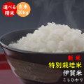 令和元年産 新米 【特別栽培米】 伊賀米コシヒカリ 玄米30kg (10kg×3)【送料無料】【精米無料】【米ぬか無料】【分づき(分搗き)対応】