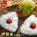 令和元年産 新米 伊賀米キヌヒカリ玄米20kg(10kgx2袋)【送料無料】【精米無料】【米ぬか無料】【分づき米対応】