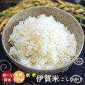 令和元年産 新米 伊賀米コシヒカリ玄米20kg(10kgx2袋)【送料無料】【精米無料】【米ぬか無料】【分づき米対応】