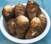 【信州の伝統野菜】坂井芋(さかいいも) A品(子株 60-100g級) 1kg
