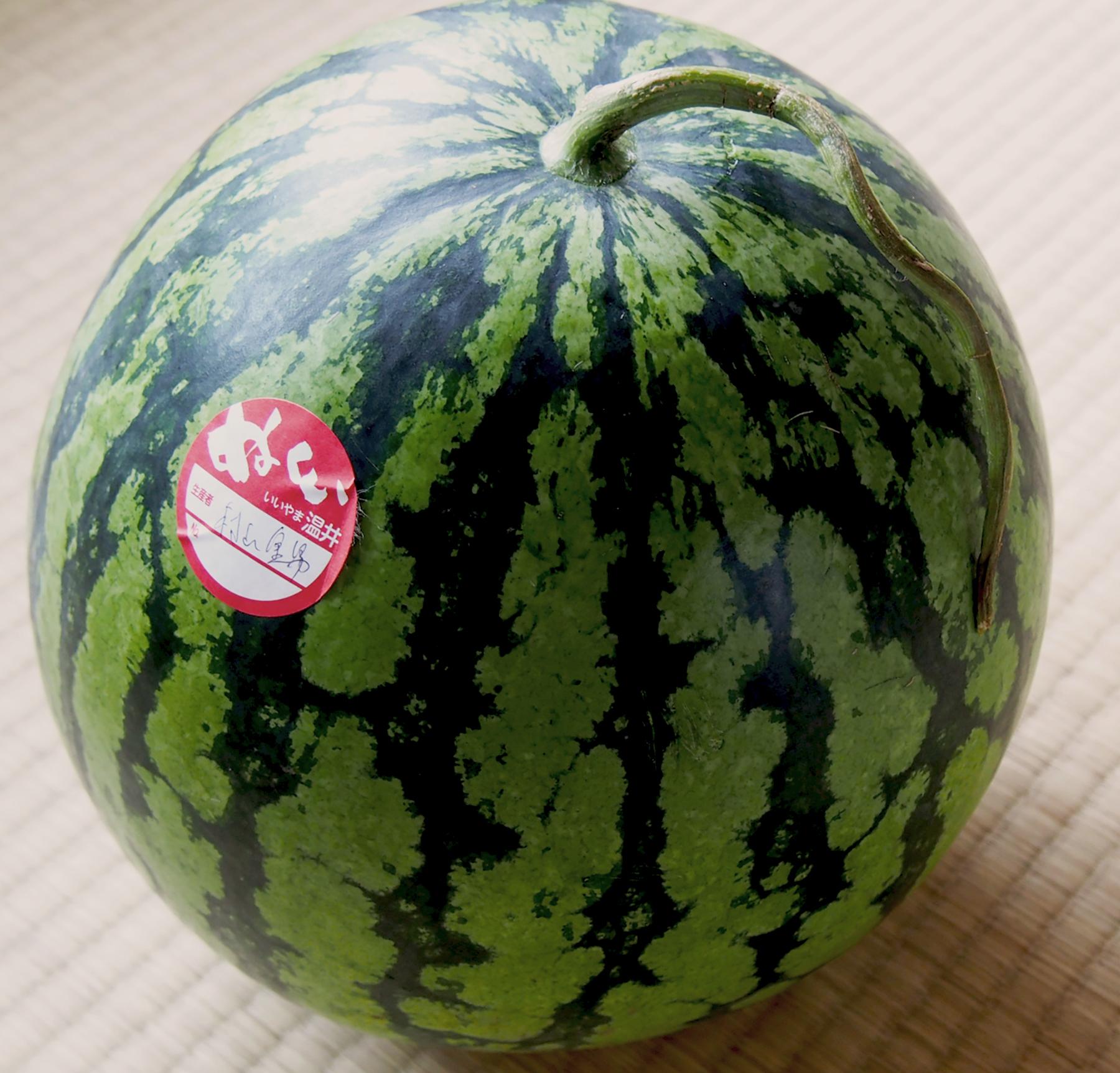 【送料無料】 温井のスイカ 【特大サイズ(10kg以上)】