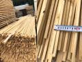 桧の線香 乾燥材