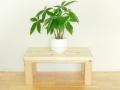 木製便利台「何でものるゾウ」(国産檜間伐材100%使用)