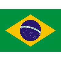中煎りブラジル トミオフクダ 樹上完熟 (100g) さわやかな苦味・甘み【レターパックライト可】