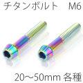 【メール便対応】 チタンボルト2本セット テーパーキャップ M6 × 25〜50mm P1.0 焼き色有り Ti - 6Al - 4V Titanium
