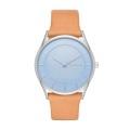 SKAGEN腕時計 スカーゲンリストウォッチ  レディース HOLST SKW2451【日本正規代理店品】