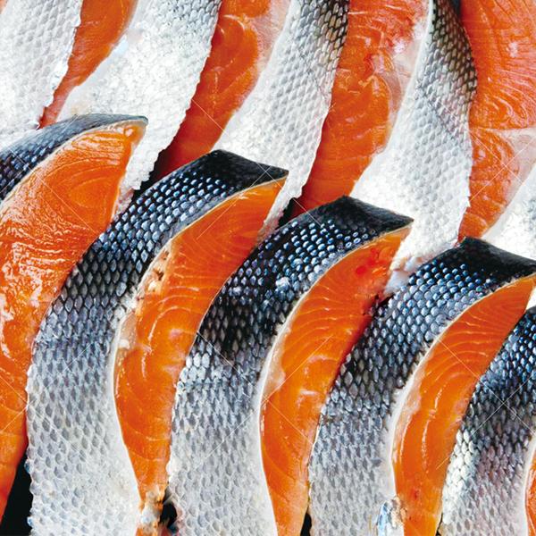 紅鮭 フィレー半身切身 【カタログ品番484】