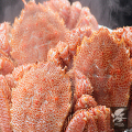 【在庫僅少】 急速冷凍 ボイル毛がに3尾セット [1尾約300g前後]【カタログ品番261】