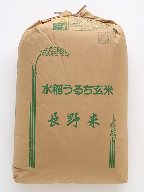 【送料無料】2年産 浅科産コシヒカリ(一等玄米) 30kg