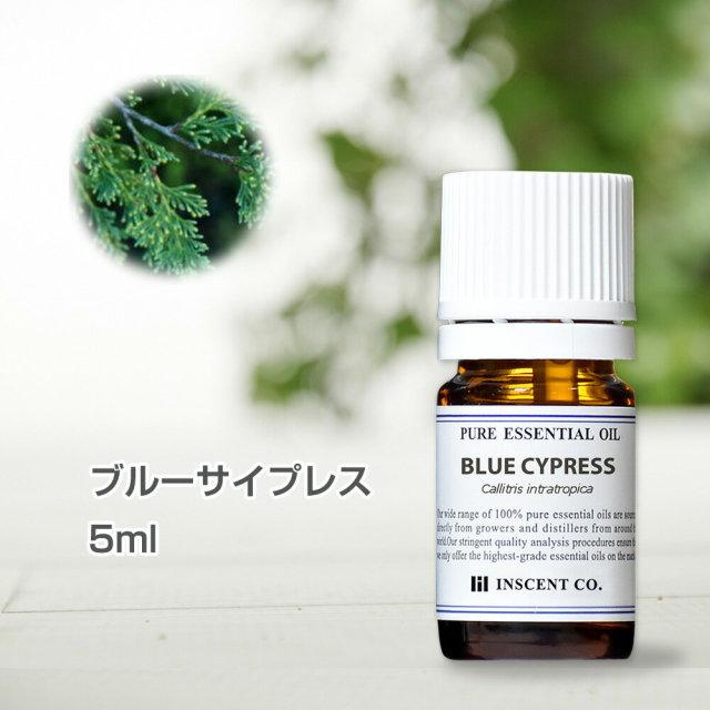 ブルーサイプレス 5ml インセント エッセンシャルオイル 精油