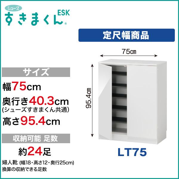 玄関収納 下駄箱 シューズすきまくん ESK 定尺幅商品 扉タイプ LT75 幅75cm 奥行き40.3cm 高さ95.4cm